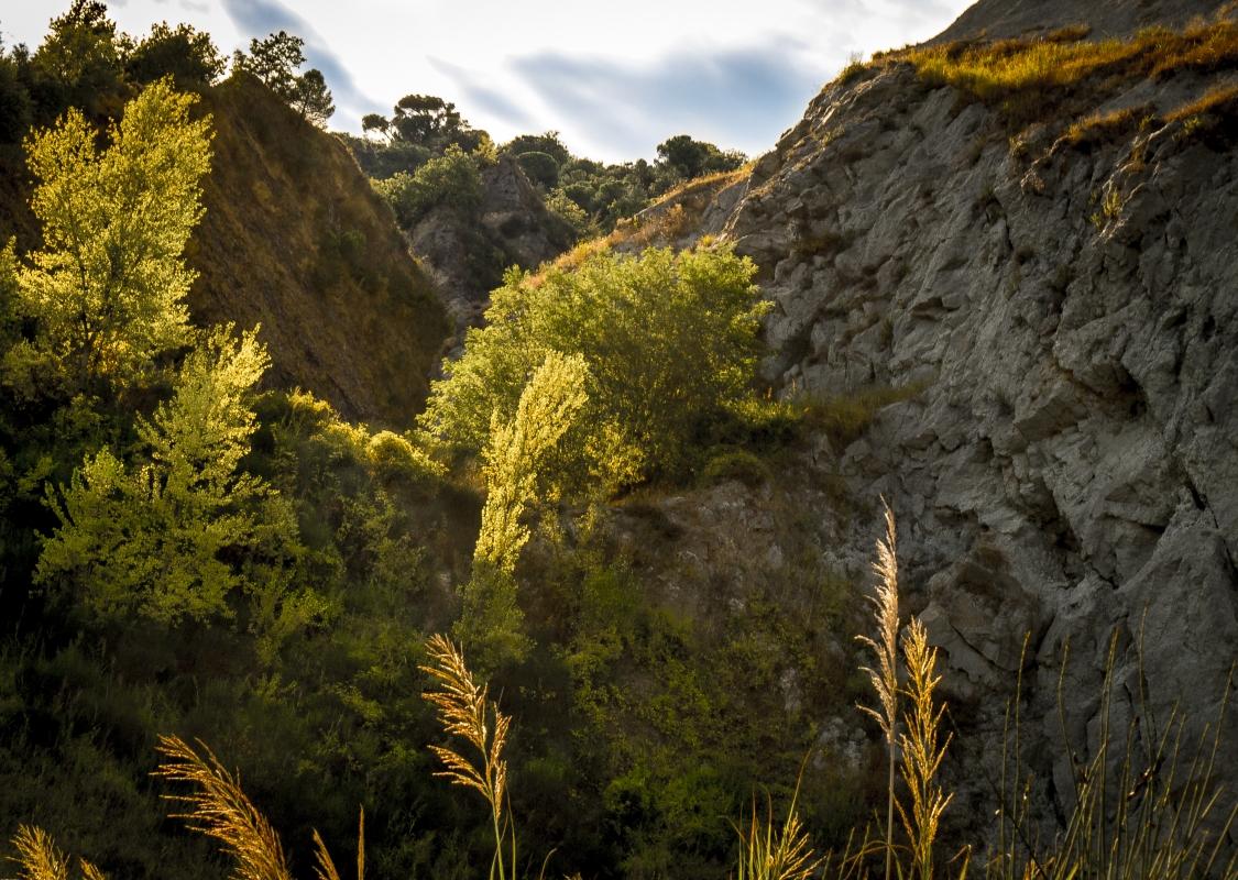Trasparenze alla cava del Monticino - Massimo Saviotti - Brisighella (RA)