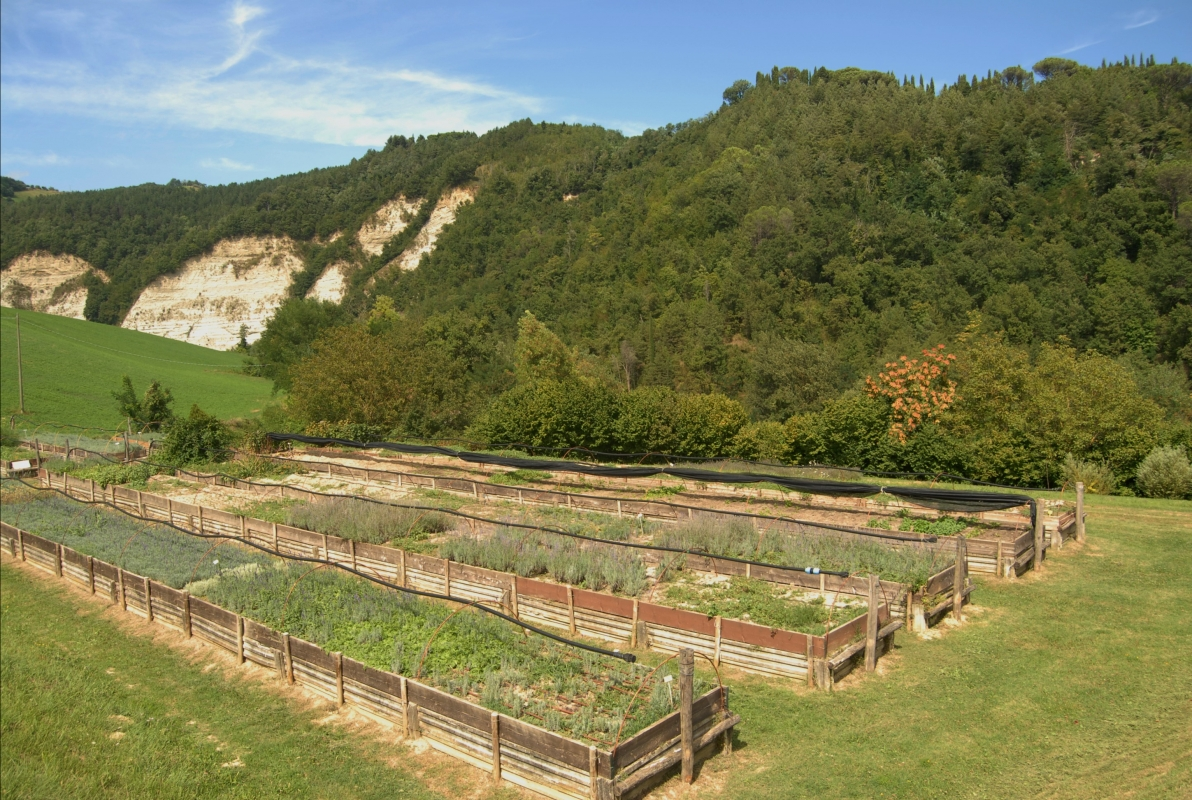Giardino delle erbe 08 - SveMi - Casola Valsenio (RA)