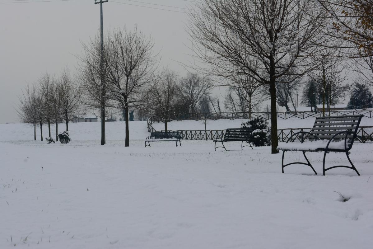 Inverno al Parco - Gianni Buscaroli 1 - Lugo (RA)