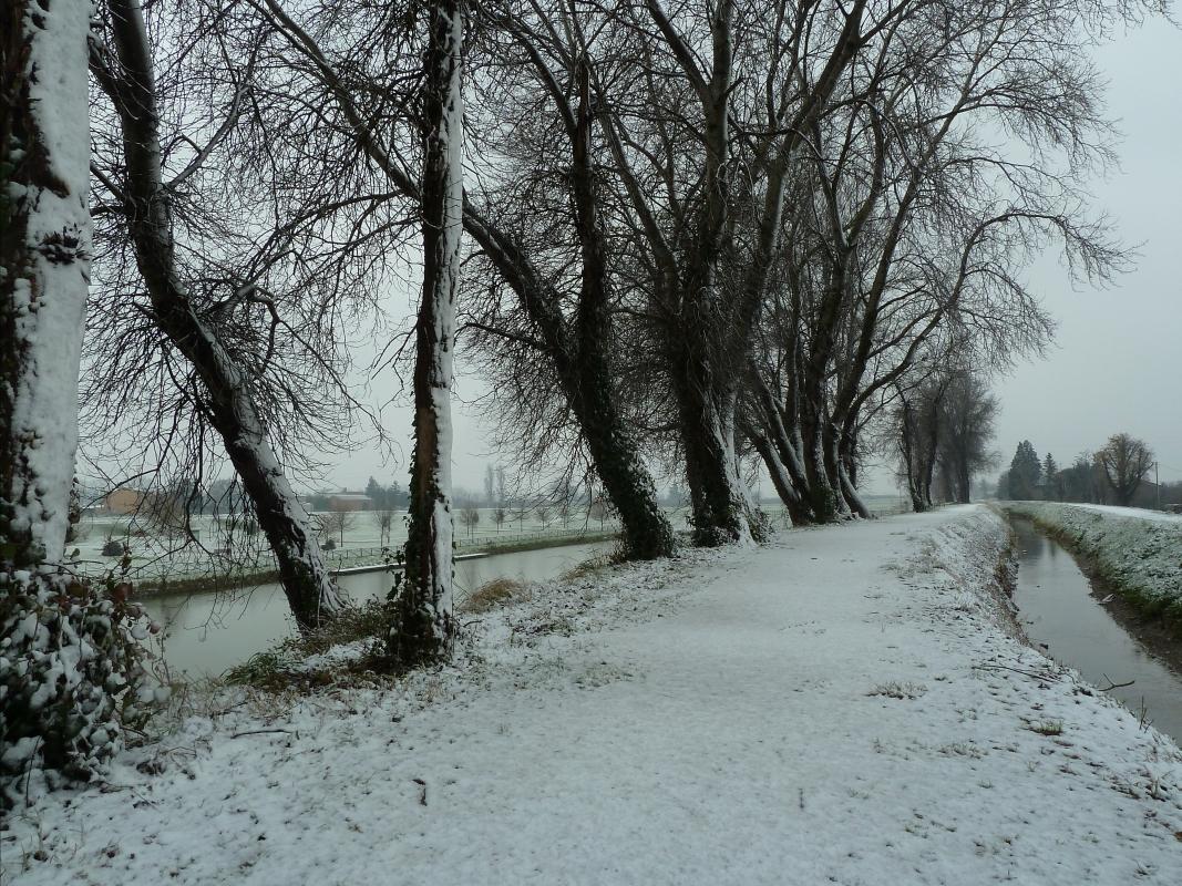 Neve nel sentiero - Gianni Buscaroli 1 - Lugo (RA)
