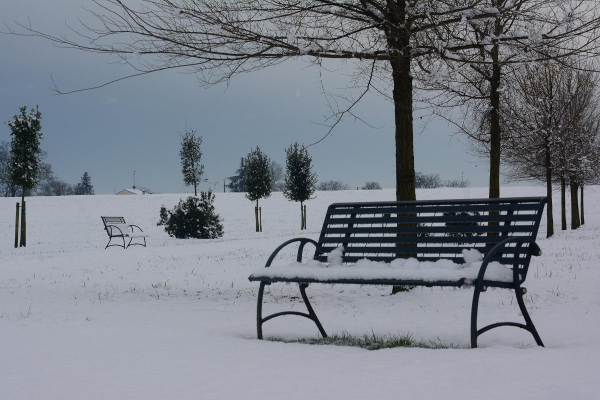 Panchina nel Parco - Gianni Buscaroli 1 - Lugo (RA)
