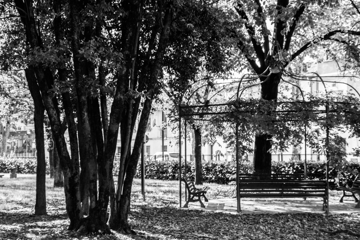 Un giardino di altri tempi - Laurina 79 - Massa Lombarda (RA)