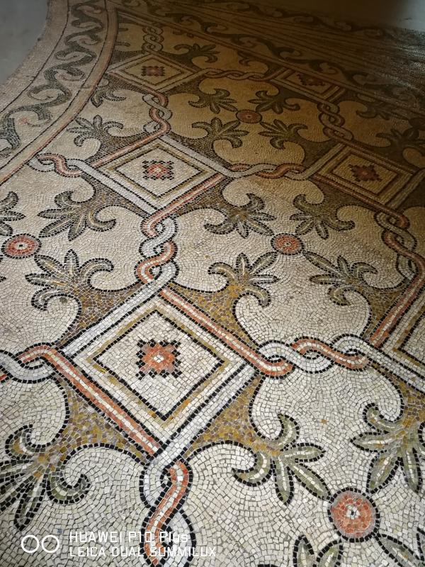 San Vitale - pavimento musivo ingresso basilica - LadyBathory1974 - Ravenna (RA)