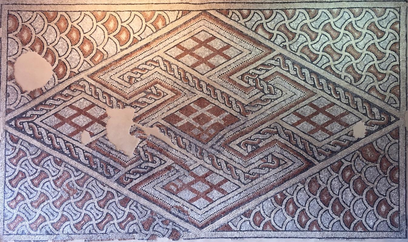 Palazzo di Teodorico - Mosaico piano superiore 12 - Walter manni - Ravenna (RA)