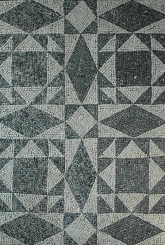 Palazzo di Teodorico - Mosaico piano superiore 10 - Walter manni - Ravenna (RA)