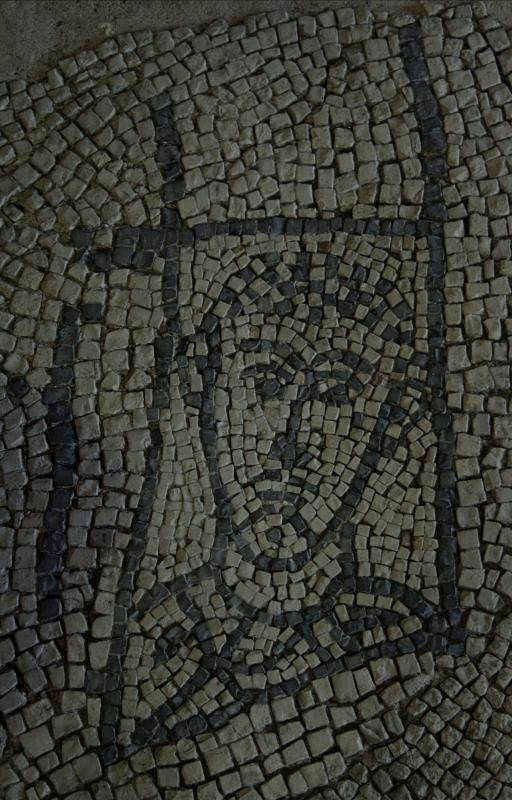 Palazzo di Teodorico - Mosaico piano superiore 5 - Walter manni - Ravenna (RA)