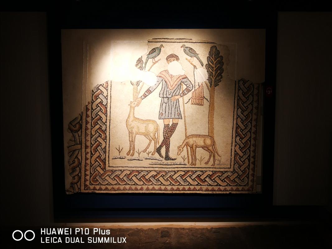 Domus dei tappeti di pietra - il Buon pastore - LadyBathory1974 - Ravenna (RA)