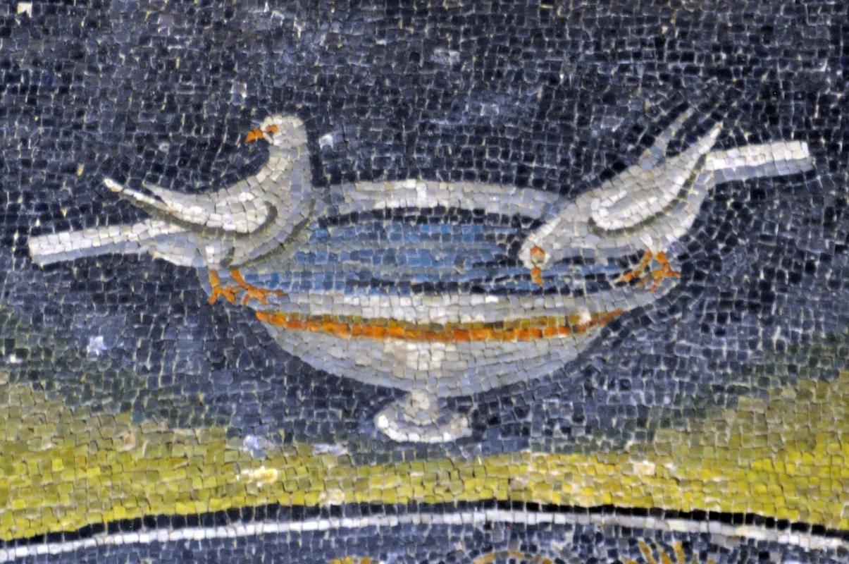 GallaPlacidia mosaico palomas - Hispalois - Ravenna (RA)