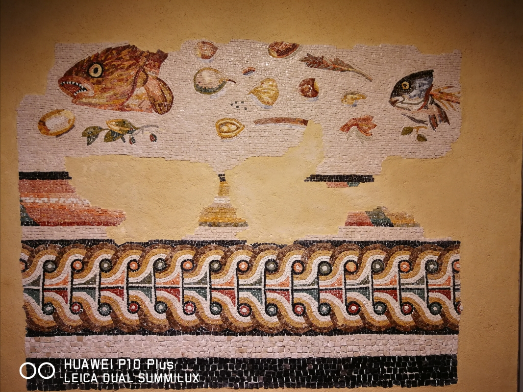 "TAMO - mosaico del ""pavimento da spazzare"" - LadyBathory1974 - Ravenna (RA)"