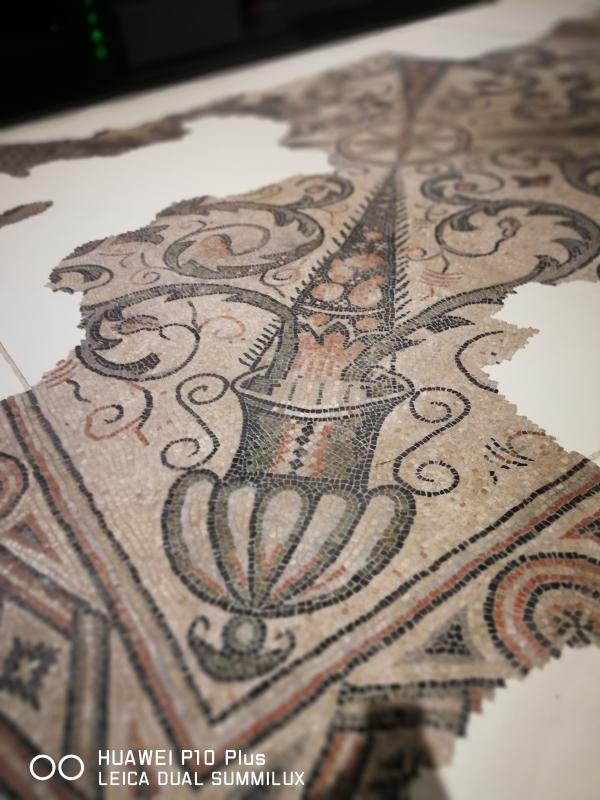 TAMO - particolare di tappeto musivo - LadyBathory1974 - Ravenna (RA)