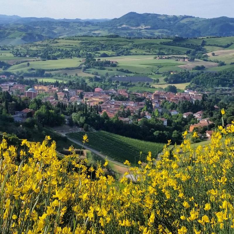Riolo Terme Primavera - Marinaloconteciaranfi - Riolo Terme (RA)