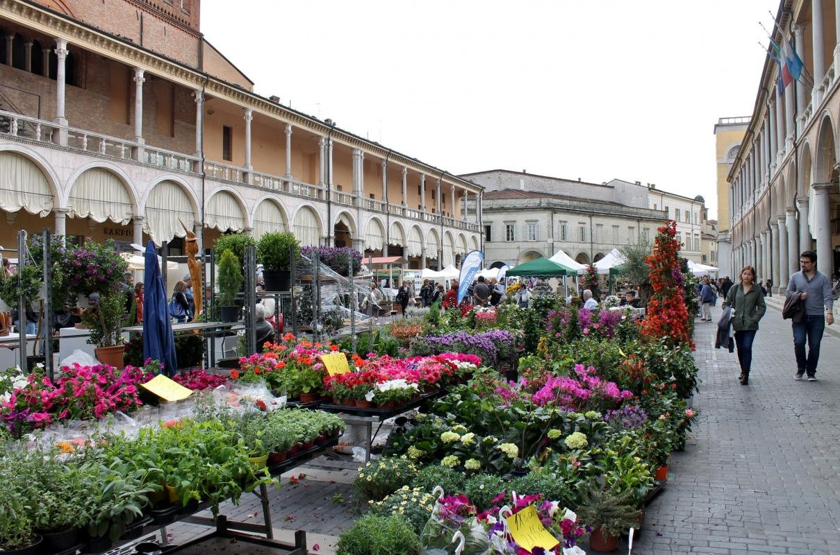 Faenza palazzo comunale - RobertaSavolini - Faenza (RA)