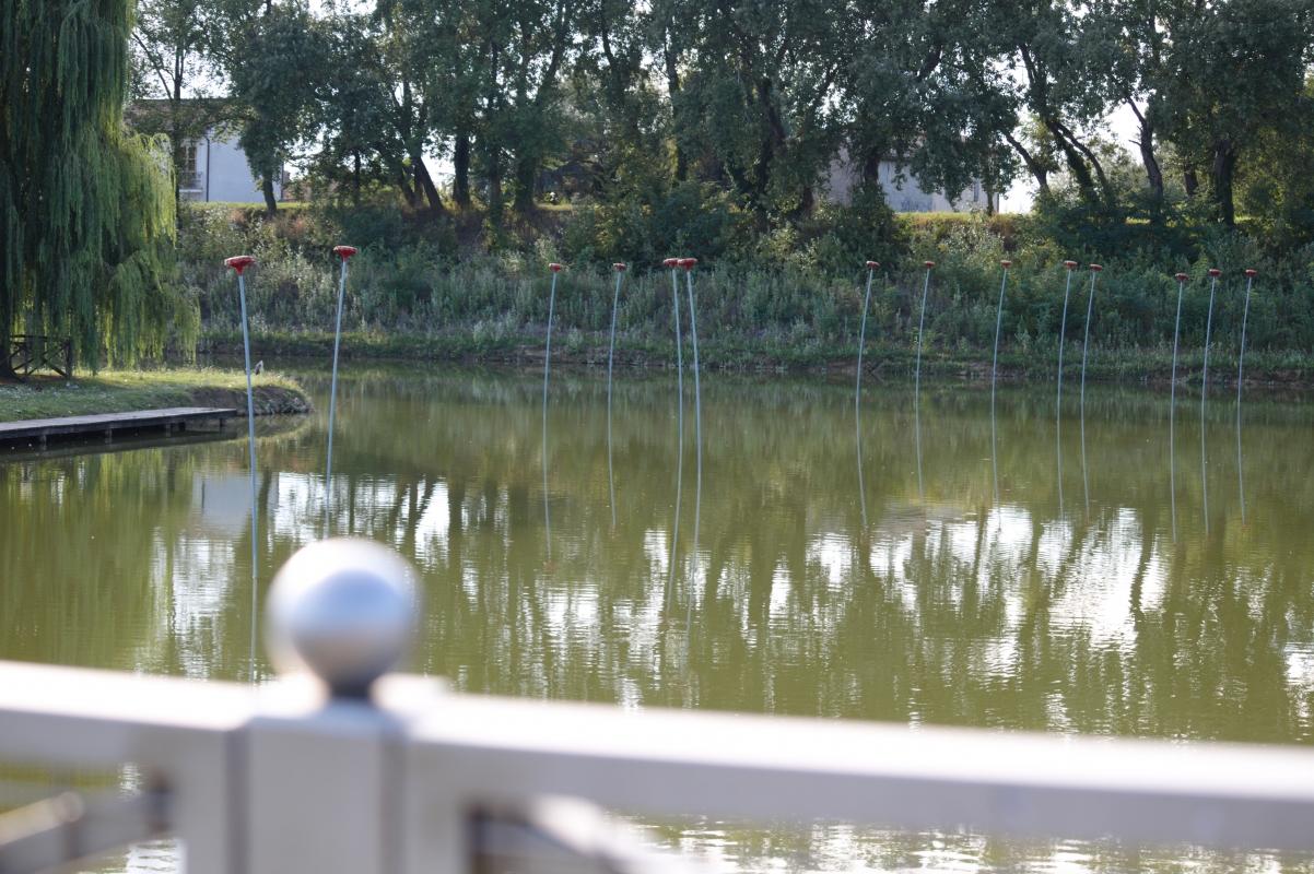 Parco Golfera - laghetto - Stefano.Ronchi.it - Lugo (RA)