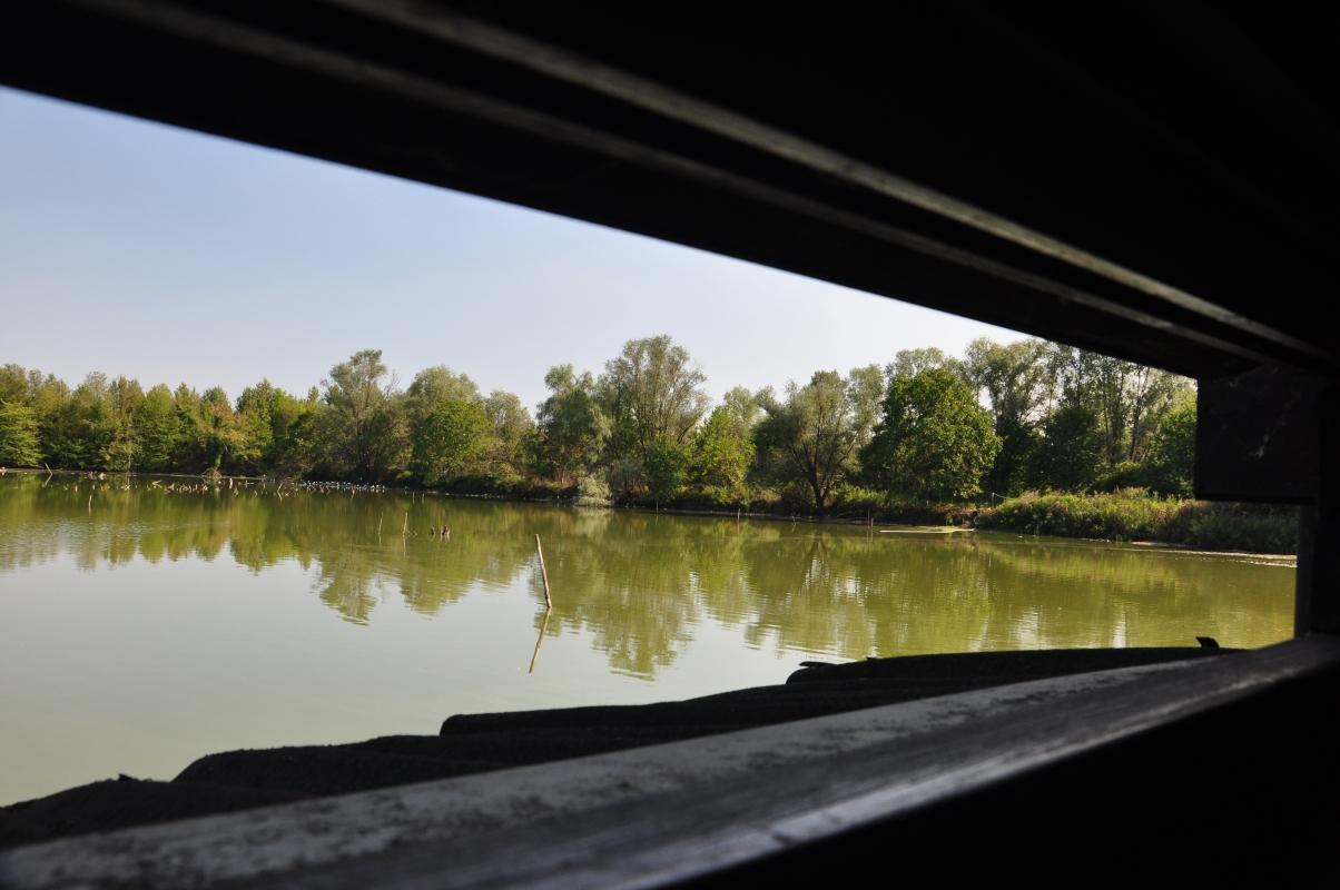 Punto di vista - Nashas - Reggio nell'Emilia (RE)