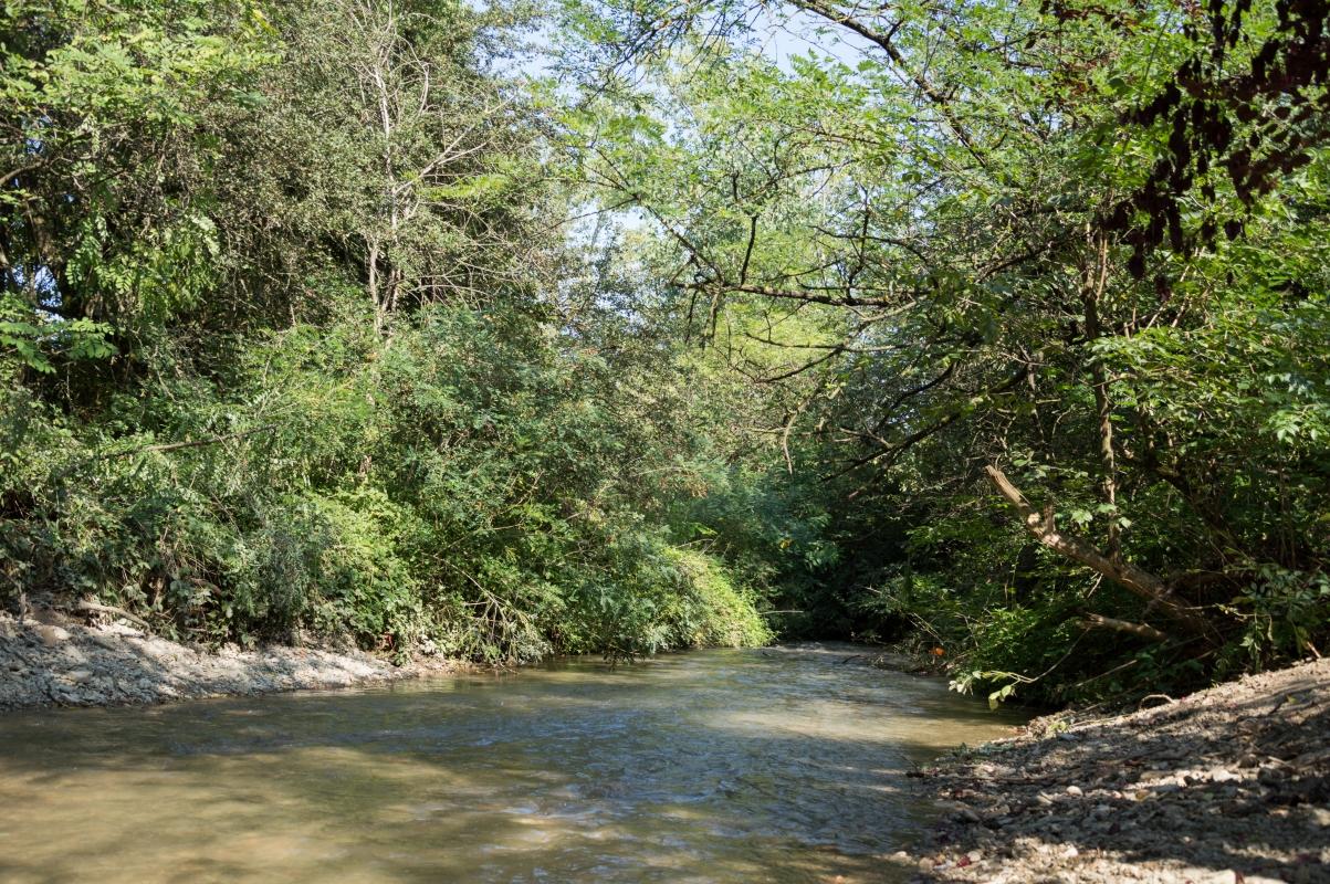 Rio Acque Chiare - Parco del Rodano - Alessandro Azzolini - Reggio nell'Emilia (RE)