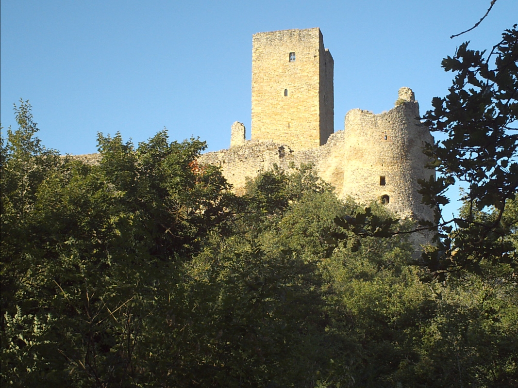 Torre e mura dal lato ovest al tramonto - Manuel.frassinetti - Carpineti (RE)