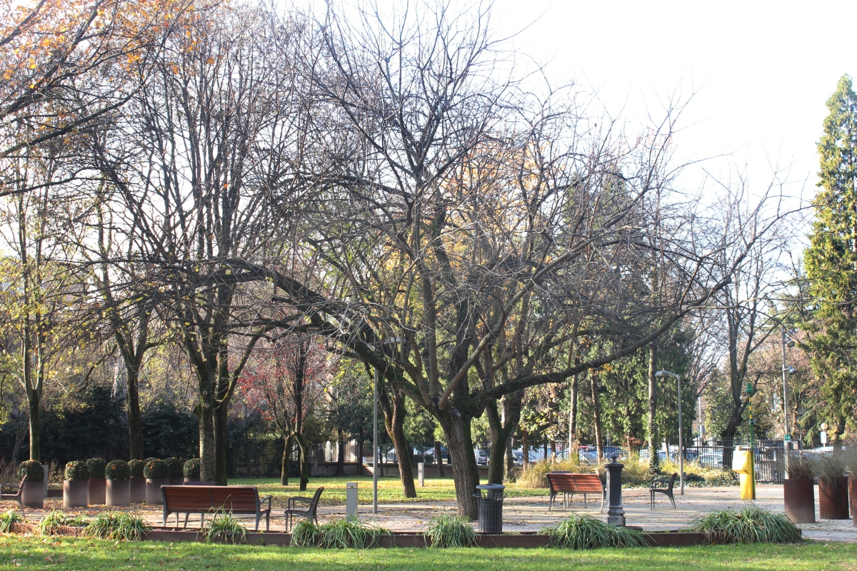 Parco Cervi 02 - Vascodegama1972 - Reggio nell'Emilia (RE)