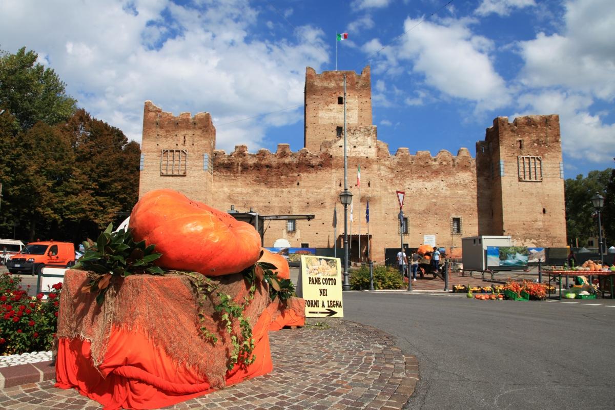 Festa della Zucca in Rocca - Lasagni-stefano - Reggiolo (RE)