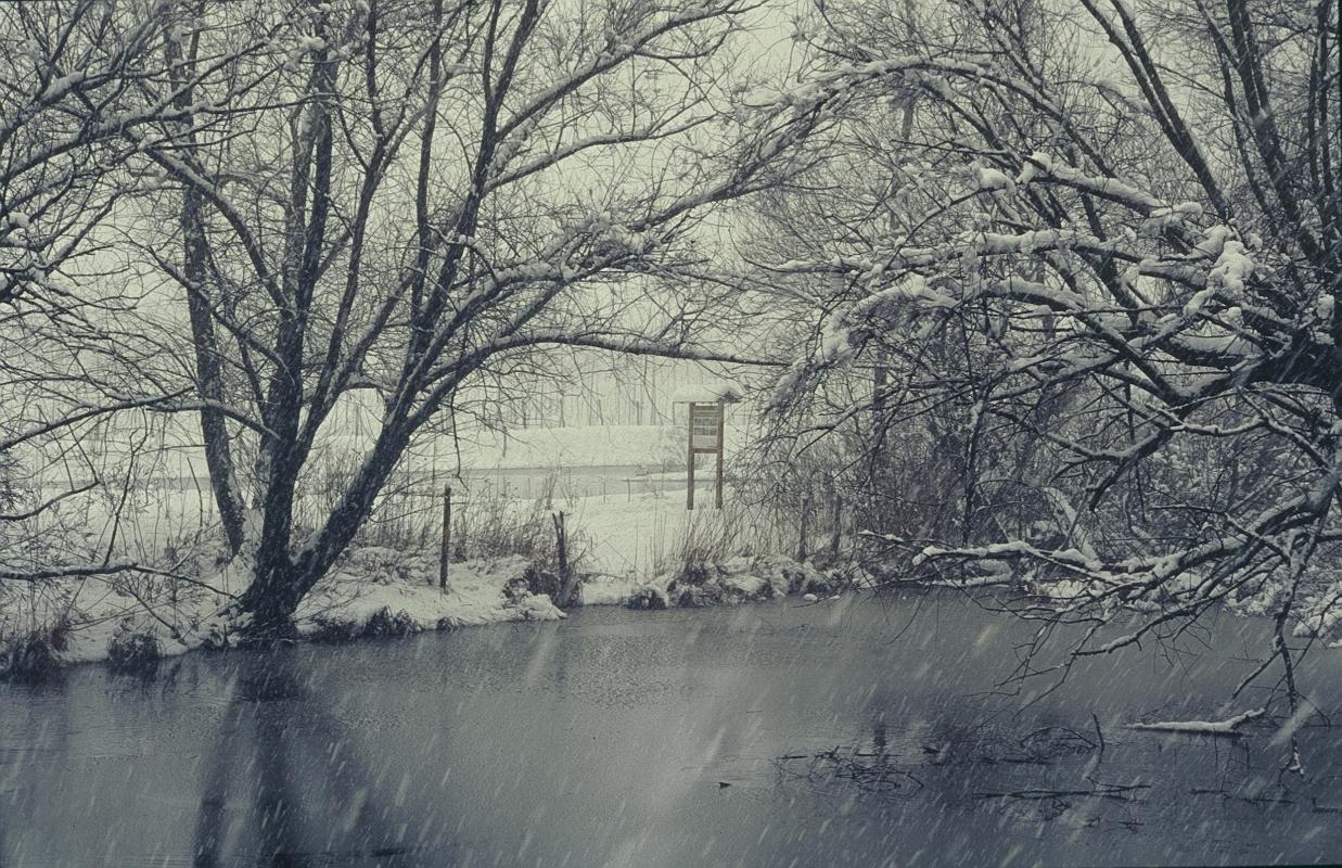 Inverno sulla valle Bruciati (loc. Fiasca) - Claudio Magnani - Reggiolo (RE)