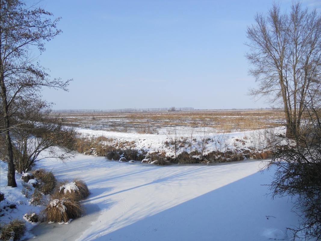 Inverno sulla valle dei bruciati (loc.Chiavica Vecchia) - Claudio Magnani - Reggiolo (RE)
