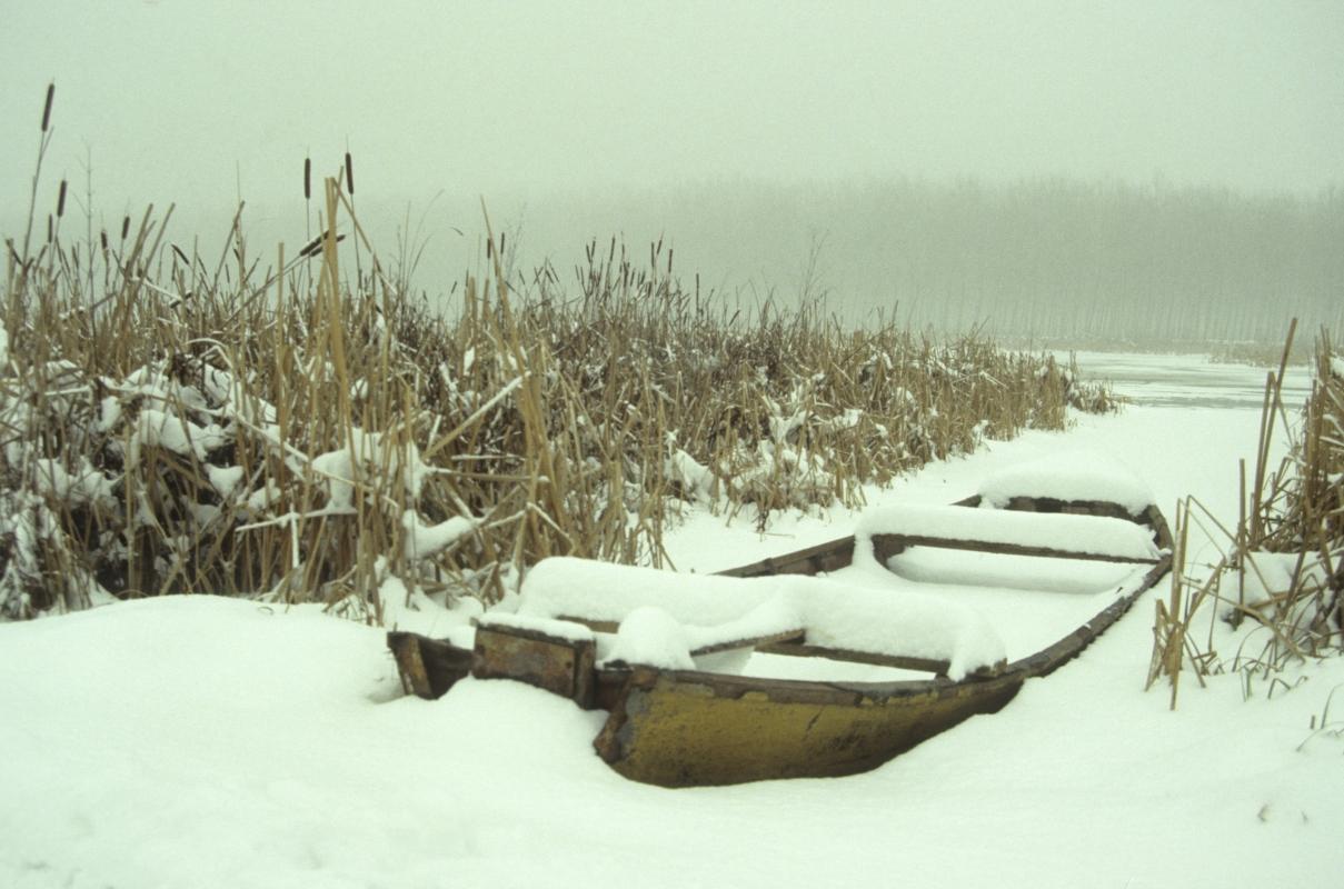 Inverno sull' appostamento fisso di caccia dei Bruciati - Claudio Magnani - Reggiolo (RE)