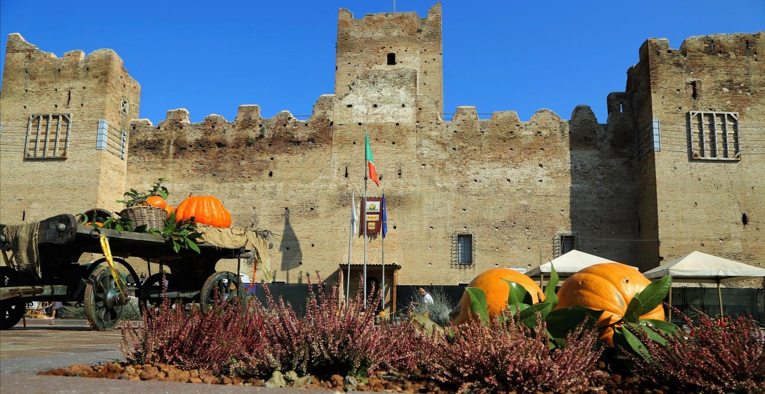 Festa della zucca in Rocca - Lasagni stefano - Reggiolo (RE)