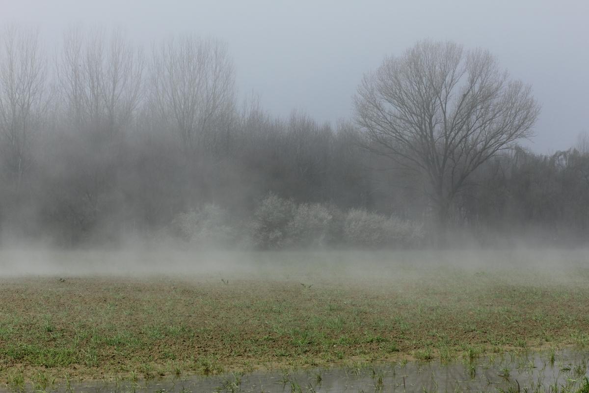 Autunno in Valle - Lasagni stefano - Reggiolo (RE)