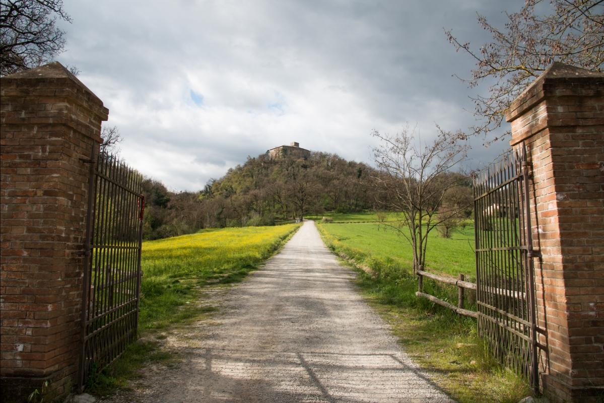 Castello di Bianello ingresso - SimoneLugarini - Quattro Castella (RE)