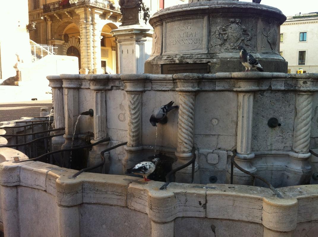 Fontana-della-pigna-rimini - Fcaproni - Rimini (RN)