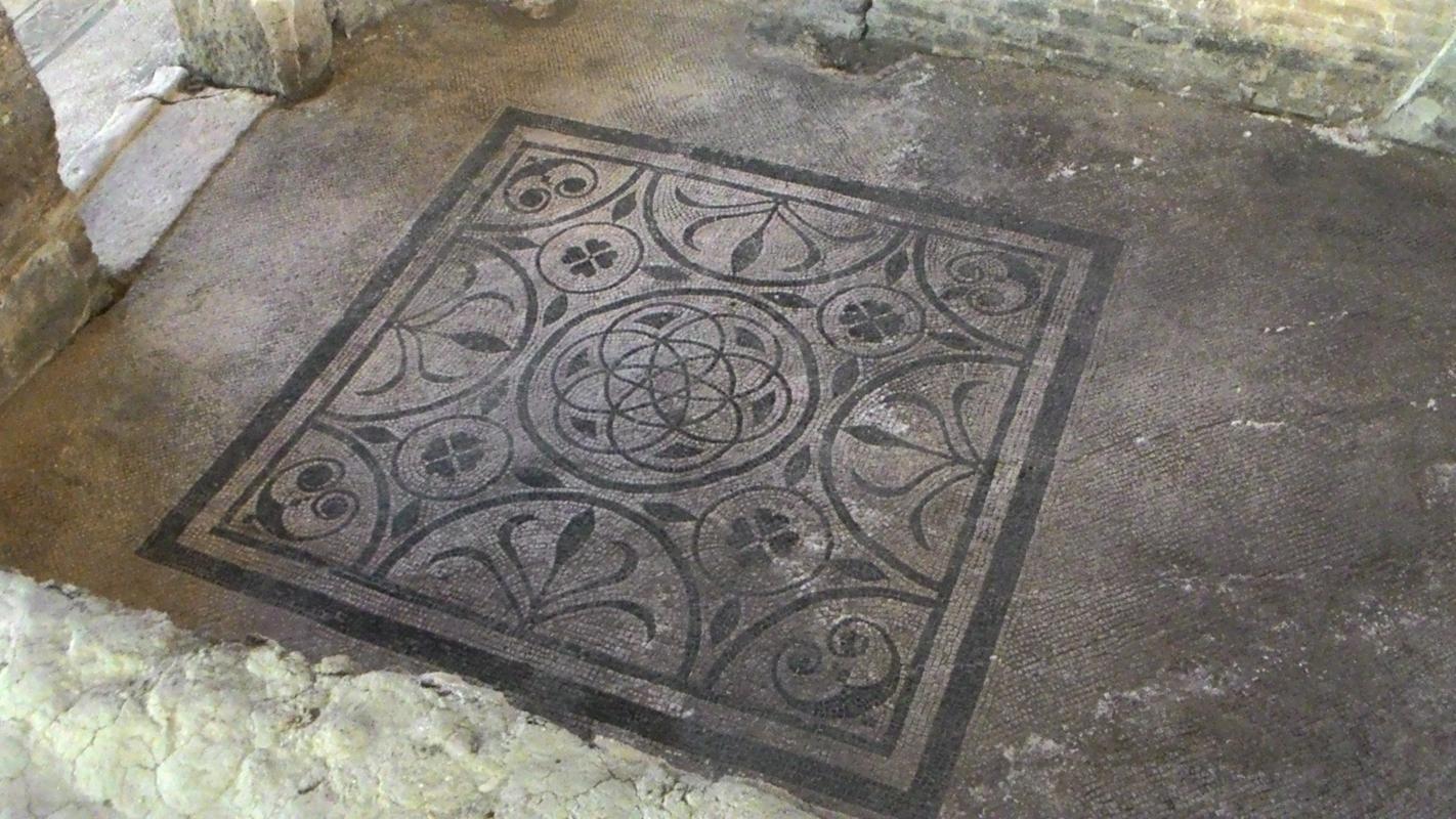 Domus del chirurgo, mosaico - Fringio - Rimini (RN)