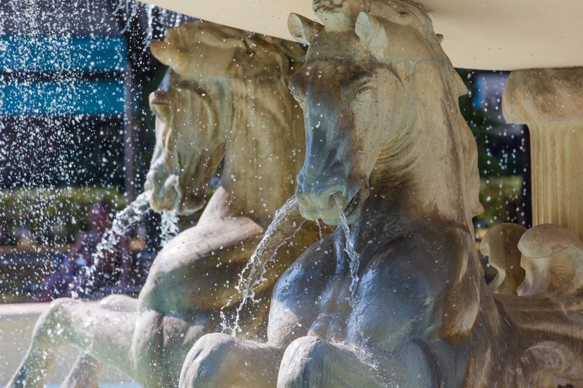 Rimini Fontana dei Quattro Cavalli Particolare - Laura Monetini - Rimini (RN)