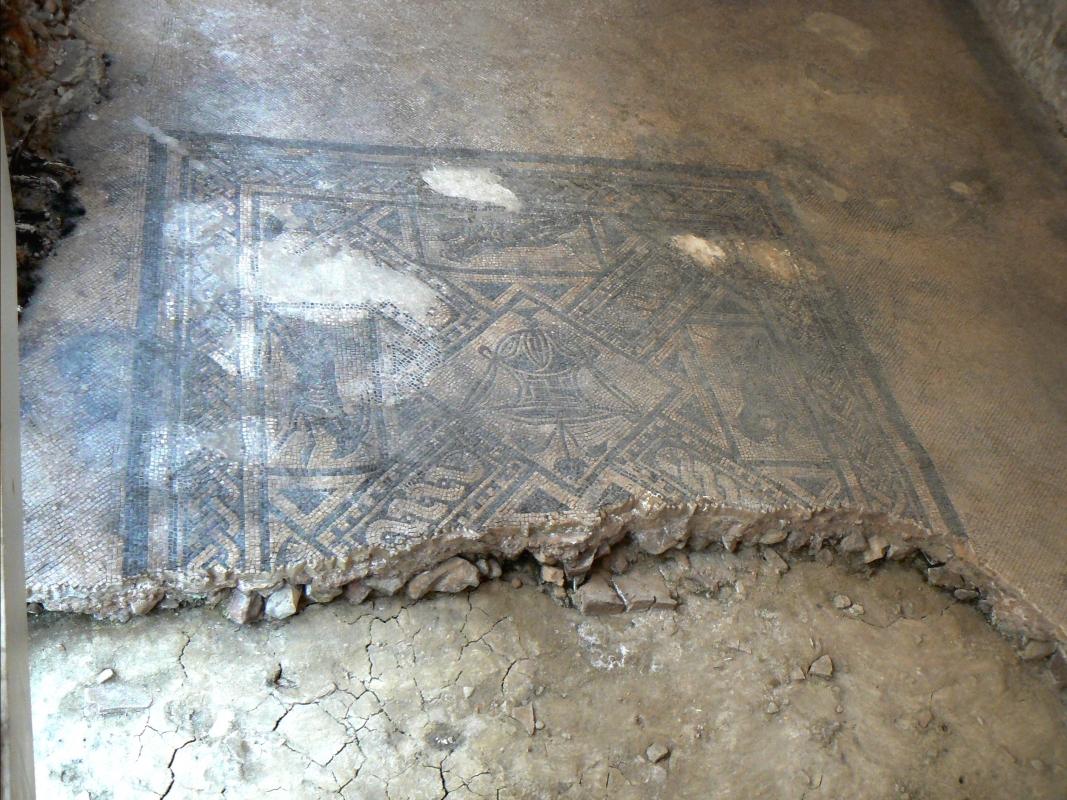 Domus chirurgo mosaici 6 - Paperoastro - Rimini (RN)