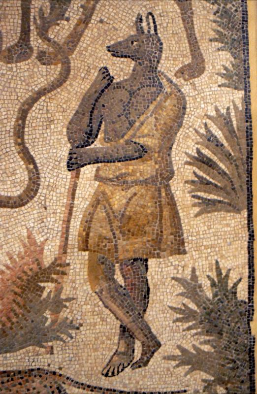 Mosaico domus chirurgo 7 - Paperoastro - Rimini (RN)