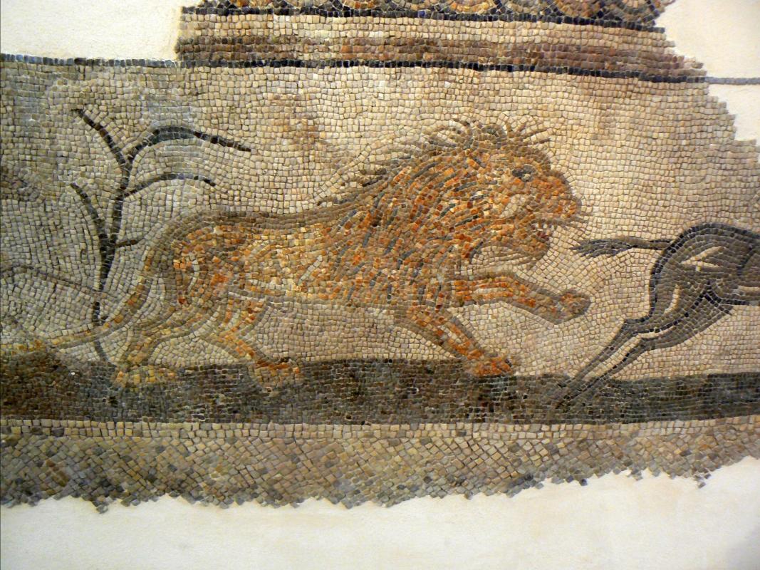 Mosaico domus chirurgo 1 - Paperoastro - Rimini (RN)