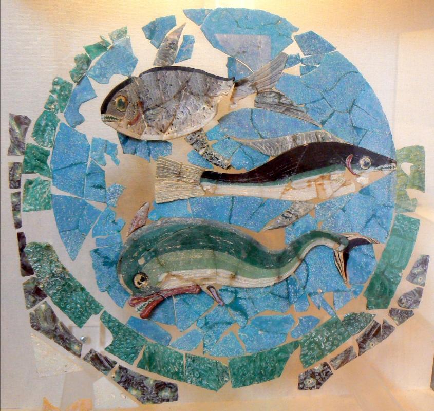Piatto con pesci domus chirurgo - Paperoastro - Rimini (RN)