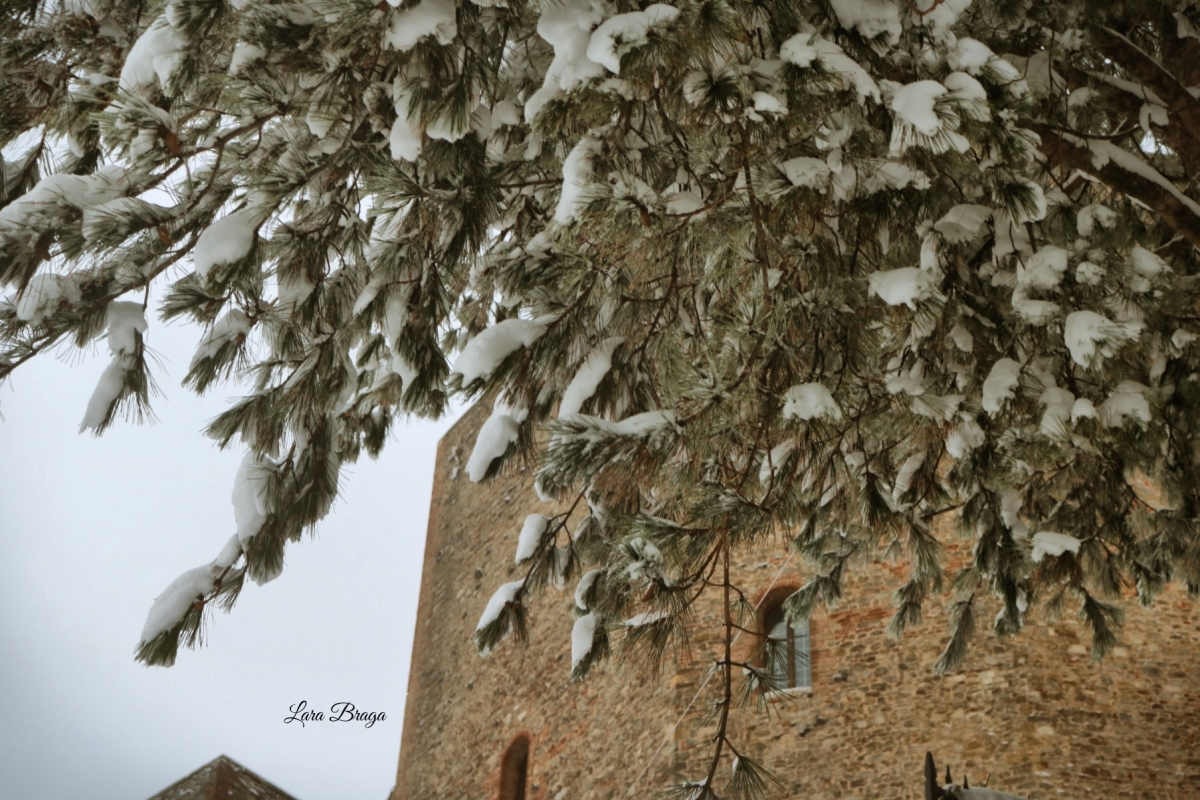 La Rocca e la neve18 - Larabraga19 - Montefiore Conca (RN)