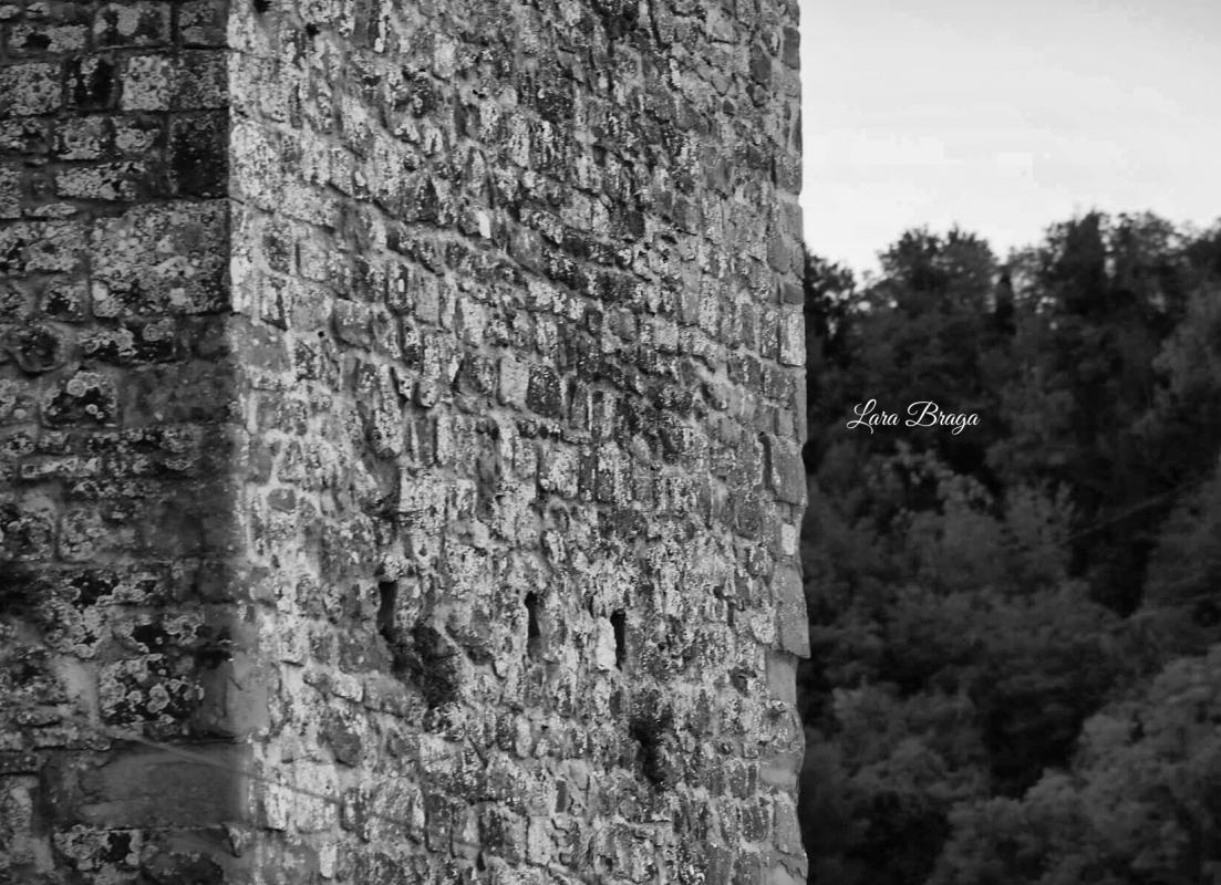 La Rocca ed i suoi colori24 - Larabraga19 - Montefiore Conca (RN)
