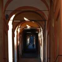 Giochi di luci ed ombre - Irenefinessi - Bologna (BO)