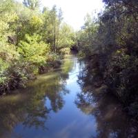 Vista fiume Idice - Albertoc - San Lazzaro di Savena (BO)