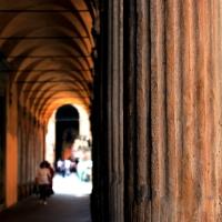 Linee storiche - Patrizia - Bologna (BO)
