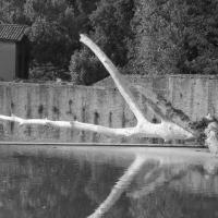 Veloce come un fiume - Francesca Caldarola - Casalecchio di Reno (BO)
