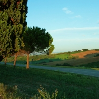 immagine da Località Dozza