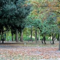 Autumnn - Ila010 - Bologna (BO)