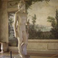 Apollino profilo - Clawsb - Bologna (BO)