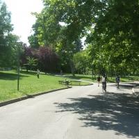 Giardini Margherita viale - Ilariaconte - Bologna (BO)