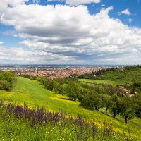 Summer clouds over Bologna - Ugeorge - Bologna (BO)