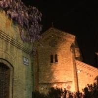 Interrogativi tra gli interstizi - Ilaria.bovina - Bologna (BO)