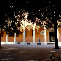 Pinacoteca Bologna 1 - Roberta Milani - Bologna (BO)