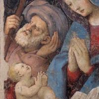Amico aspertini, sacra famiglia, 1518 ca., 02 - Sailko - Bologna (BO)