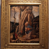 Marco zoppo, san girolamo penitente, 1470 ca., 01 - Sailko - Bologna (BO)
